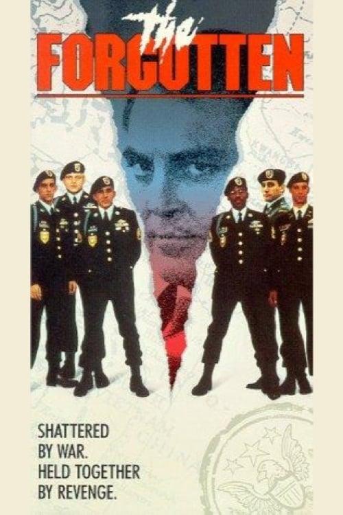 Mira La Película The Forgotten En Línea