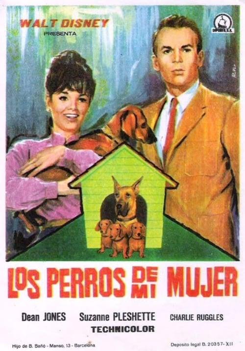 Cómo Ver Los Perros De Mi Mujer 1966 En Streaming The Streamable