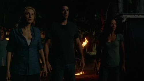 Lost - Season 4 - Episode 11: Cabin Fever