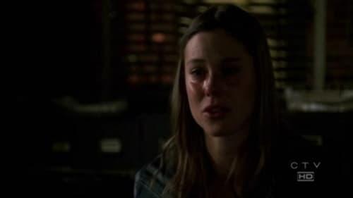 Law & Order: Special Victims Unit: Season 8 – Episode Haystack