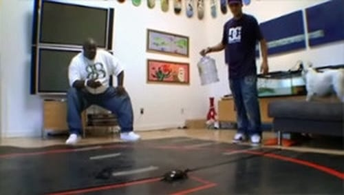 Watch Rob & Big S3E02 Online