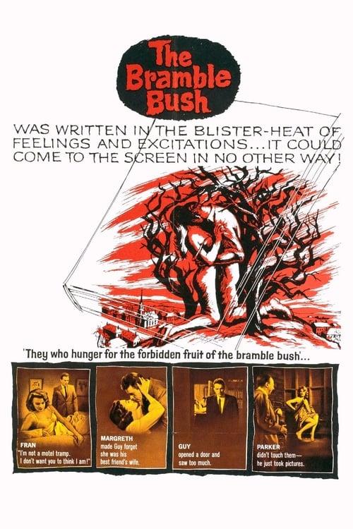 Assistir Filme The Bramble Bush Em Português Online