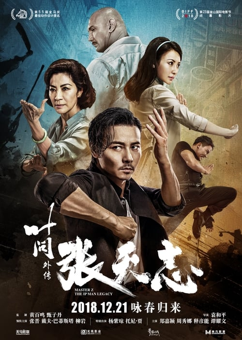 Master Z : The Ip Man Legacy Film en Streaming complet