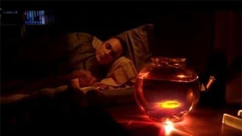 The Big Bang Theory - Season 1 - Episode 4: The Luminous Fish Effect