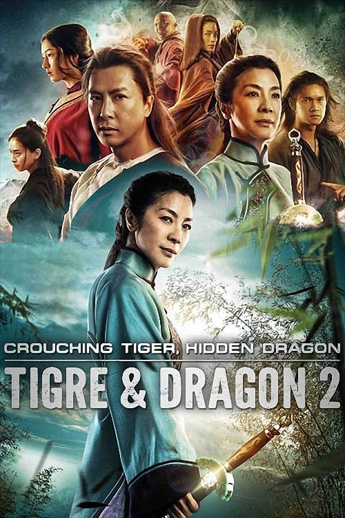 Visualiser Tigre et Dragon 2 (2016) streaming Netflix FR