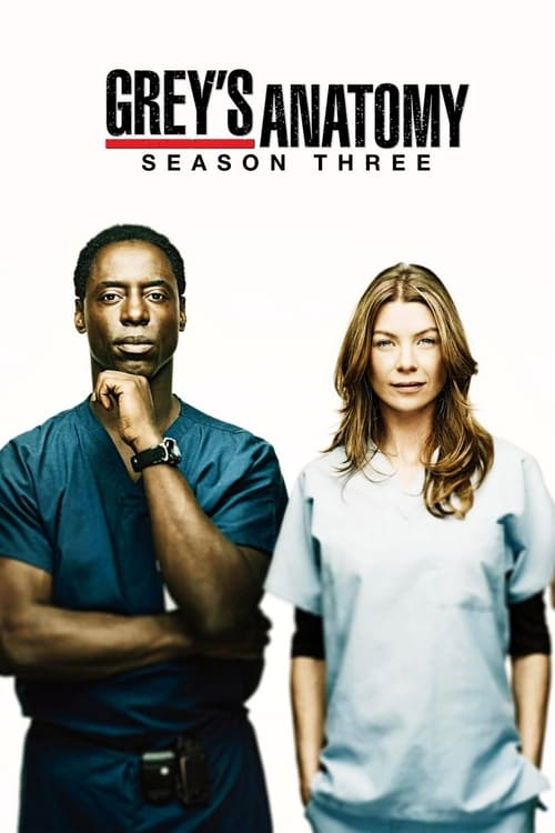 Grey X27 S Anatomy: Season 3