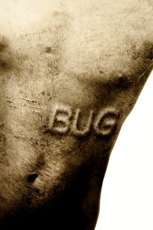 The poster of Bug