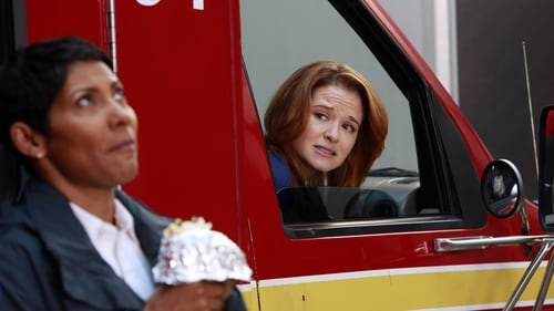 Grey's Anatomy - Season 9 - Episode 14: The Face of Change