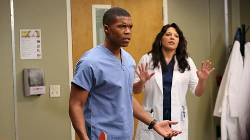 Grey's Anatomy - Season 9 - Episode 11: The End is the Beginning is the End