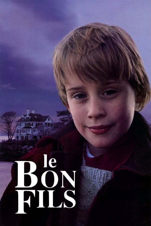 [HD] Le Bon Fils (1993) streaming vf