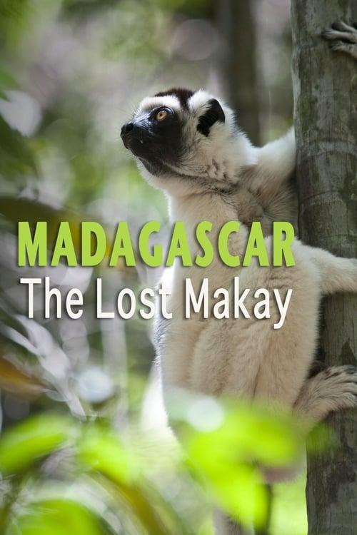 Madagascar: The Lost Makay ( Madagascar: The Lost Makay )