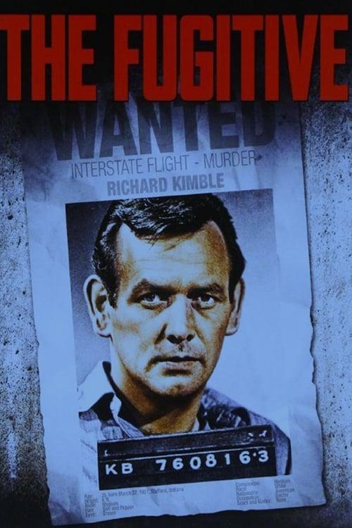 The Fugitive: Season 3