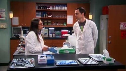 The Big Bang Theory - Season 5 - Episode 16: The Vacation Solution