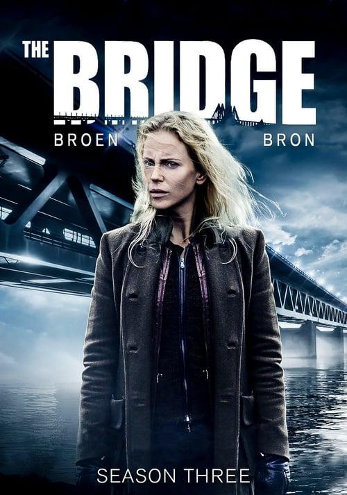 Serie The Bridge
