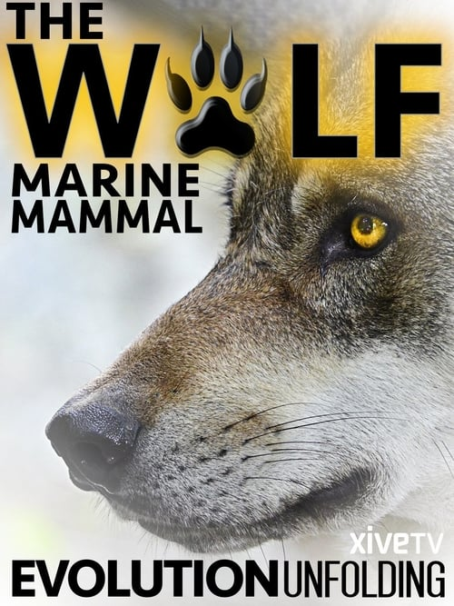 Watch The Wolf: Marine Mammal En Español