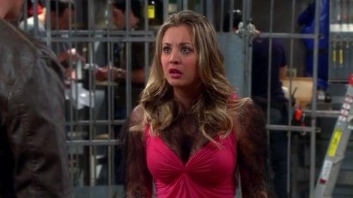 The Big Bang Theory - Season 7 - Episode 23: The Gorilla Dissolution