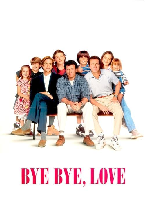 Bye Bye Love (1995) Poster