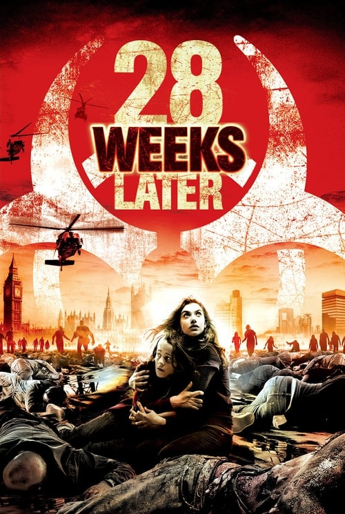 28 Weeks Later: 28 Seconds Later (2007)