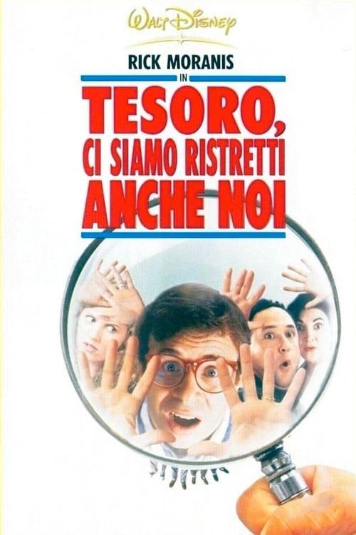 Tesoro, ci siamo ristretti anche noi (1997)