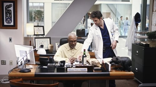 Grey's Anatomy - Season 6 - Episode 12: I Like You So Much Better When You're Naked