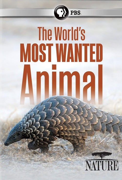 Mira The World's Most Wanted Animal Con Subtítulos En Línea