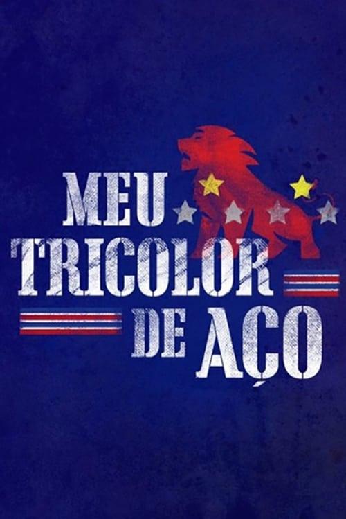 Meu Tricolor de Aço