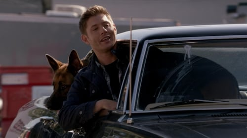 Supernatural: Season 9 – Episod Dog Dean Afternoon