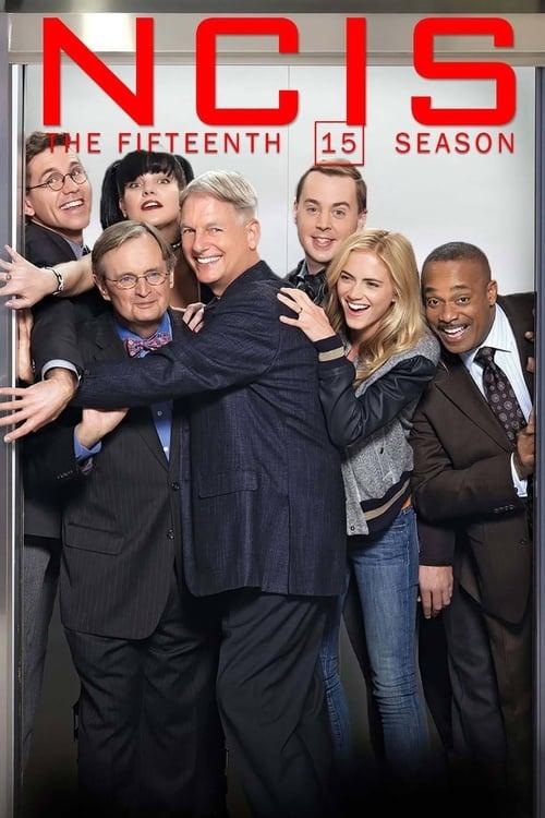 NCIS: Season 15