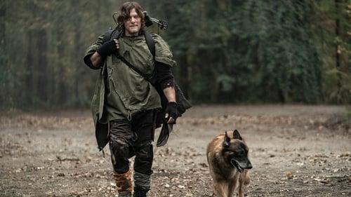 The Walking Dead - Season 10 - Episode 18: Find me