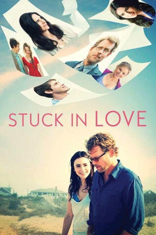 Stuck in Love (2013)