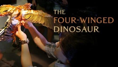 NOVA: Season 35 – Episode The Four Winged Dinosaur