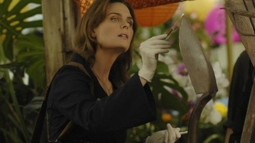 Bones: Season 4 – Episod The Perfect Pieces in the Purple Pond