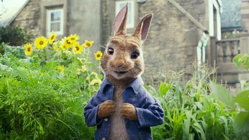 Why Peter Rabbit