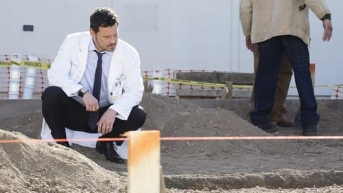 Grey's Anatomy - Season 16 - Episode 6: 6