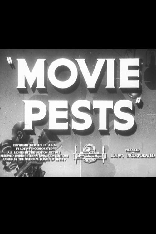 Película Movie Pests En Buena Calidad