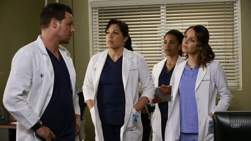 Grey's Anatomy - Season 12 - Episode 10: All I Want Is You