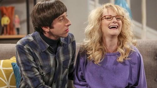 The Big Bang Theory - Season 10 - Episode 12: The Holiday Summation