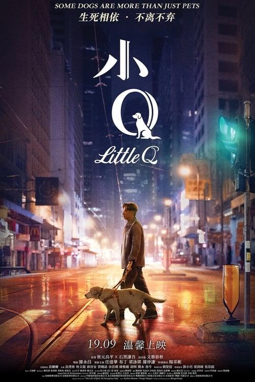 Little Q (2019)