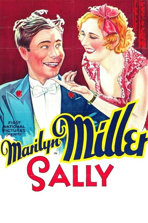 Película Sally Gratis En Línea