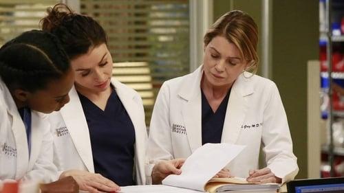 Grey's Anatomy - Season 12 - Episode 12: My Next Life