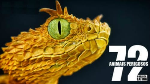 72 Animales Peligrosos: America Latina