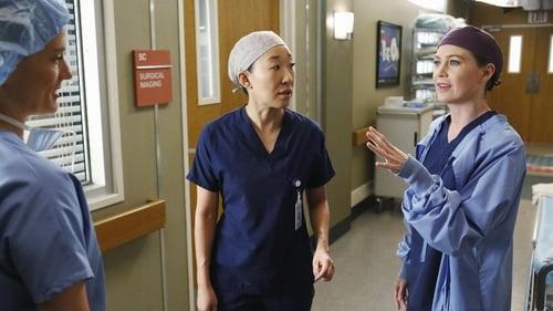 Grey's Anatomy - Season 10 - Episode 21: change of heart