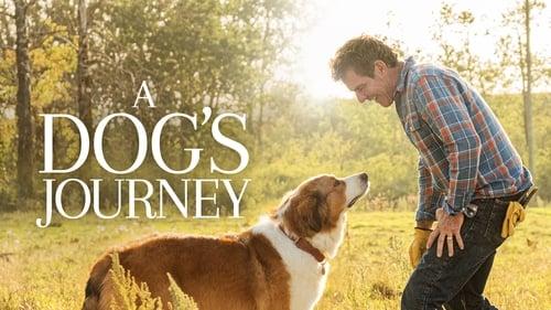 A Dog's Journey - Some friendships transcend lifetimes. - Azwaad Movie Database