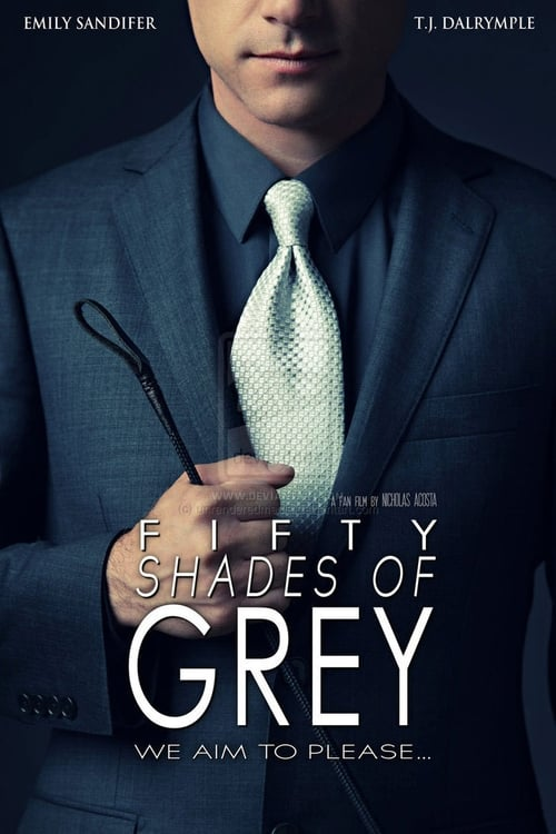 fifty shades of grey a look