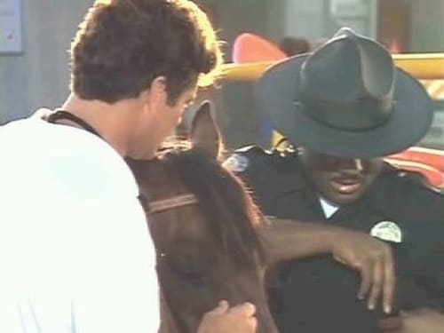 Baywatch 1993 1080p Extended: Season 4 – Episode Sky Rider