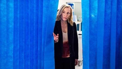 Assistir The Fall S03E01 – 3×01 – Dublado