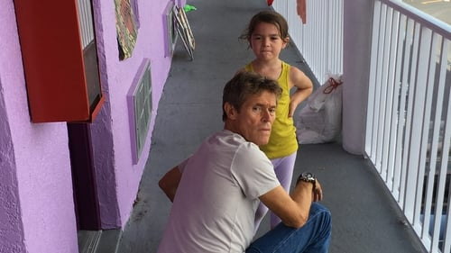 Watch The Florida Project Online Freeform