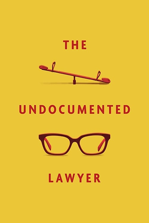 The Undocumented Lawyer There