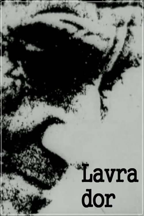 Ver pelicula Lavra Dor Online