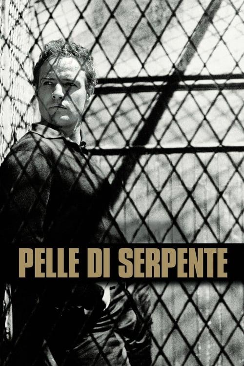 Pelle di serpente (1960)
